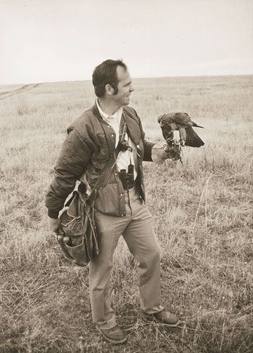 Bill Burnham  falconry