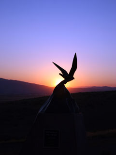 sunrise at falconers' monument