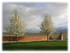wall of remembrance and trees