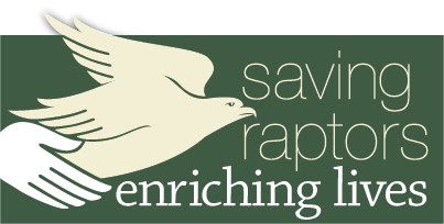 Saving Raptors, Enriching Lives
