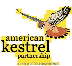 American Kestrel Partnership logo
