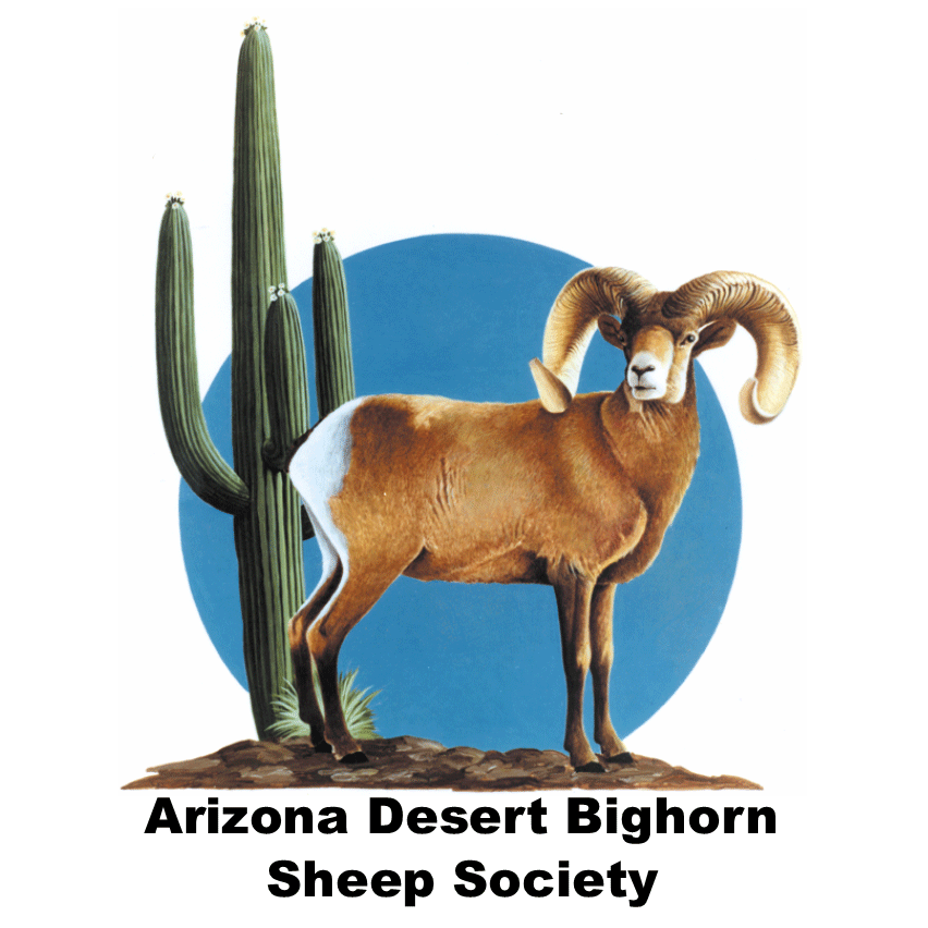 Arizona Desert Bighorn Sheep Society logo