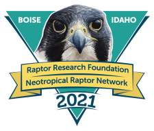 Raptor Research Foundation conference 2021 logo